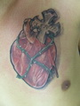 realisticke srdce kriz  Tetování - kérky - Tattoo