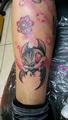 netopyr na noze  Tetování - kérky - Tattoo