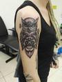 sova a sugarskull  Tetování - kérky - Tattoo